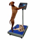 Весы ветеринарные