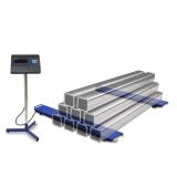 Весы МП 1000 ВЕДА Ф-1 (500; 1200х120) балочные Циклоп 06